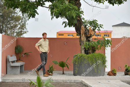 Prince Harry beneath the Diana Tree in Huambo, Angola, on day five of the royal tour of Africa. The Duke is visiting the minefield where his late mother, the Princess of Wales, was photographed in 1997, which is now a busy street with schools, shops and houses.