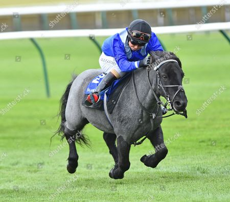 Briar Smokey Joe, ridden by Zak Kent, wins The Shetland Pony GrandNational Flat Race in aid of Bob Champion Cancer Trust & Supported by Shadwell.