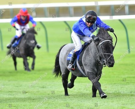 (R) Briar Smokey Joe, ridden by Zak Kent, wins The Shetland Pony GrandNational Flat Race in aid of Bob Champion Cancer Trust & Supported by Shadwell.