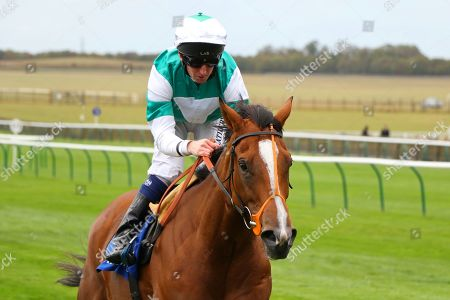 SPIRIT OF APPIN ridden by Martin Dwyer 1st Princess Anne Muhaarar Stakes (Group 3) at Newmarket Copyright: Ian Headington/racingfotos.com