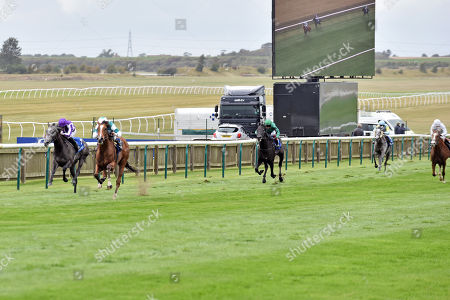 Editorial photo of Horse Racing - 27 Sep 2019