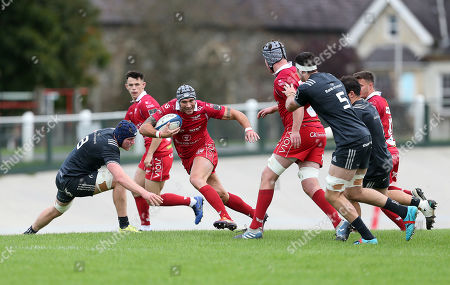 Stock Picture of Tom James of Scarlets makes a break.