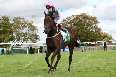 SISKIN ridden by Colin Keane before disaster struck in the stalls for The Juddmonte Middle Park Stakes (Group 1) at Newmarket Copyright: Ian Headington/racingfotos.com