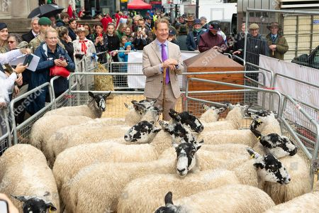 Michael Portillo poses with a flock of North of England Mules before crossing London Bridge.