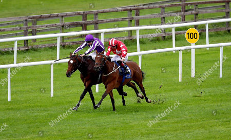 The Anglesey Lodge Equine Hospital Irish EBF Maiden. Colin Keane onboard Pablo Diablo comes home to win