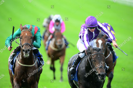 Editorial image of Horse Racing - 29 Sep 2019