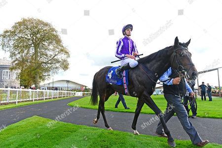 Stock Photo of CURRAGH. INNISFREE and Donnacha O'Brien win The Beresford Stakes for trainer Aidan O'Brien from SHEKHEM.