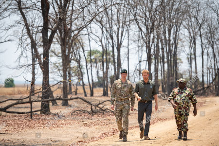 Stock Image of Prince Harry, with Brigadier Tom Bateman (left), arrives at the memorial site for Guardsman Mathew Talbot of the Coldstream Guards at the Liwonde National Park in Malawi, on day eight of the royal tour of Africa. Guardsman Talbot lost his life in May 2019 on a joint anti-poaching patrol with local park rangers.