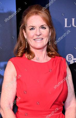 Sarah Ferguson Duchess of York the Duchess of York