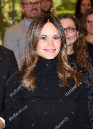 Princess Sofia of Sweden attends a dyslexia conference called 'Learn and Dyslexia'