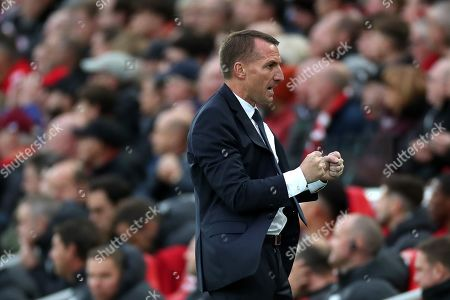 Leicester City manager Brendan Rodgers celebrates his sides equalising goal to make the score 1-1