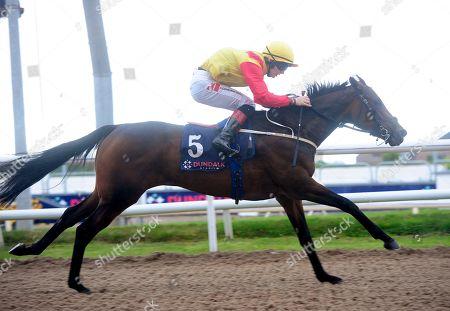 Dundalk BRUNELLE & Colin Keane win the Irish Stallion Farms EBF race.