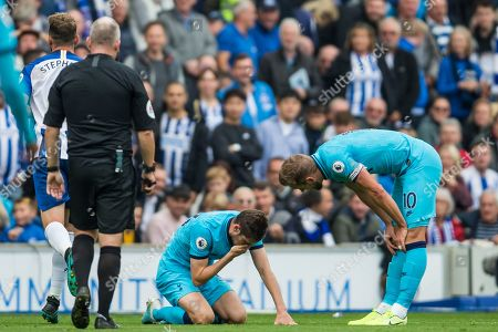 Ben Davies (Tottenham) injured and holding onto his nose during the Premier League match between Brighton and Hove Albion and Tottenham Hotspur at the American Express Community Stadium, Brighton and Hove