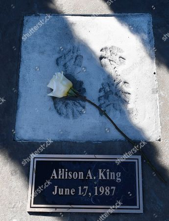 View of rememberance stone in memory of Allison A. King, at the Reflections Memorial unveiling ceremony, on the one year anniversary of the Schoharie limousine crash that killed 20 people next to the Apple Barrel Restaurant, in Schoharie, N.Y