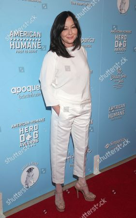 Editorial image of American Humane Hero Dog Awards, Arrivals, Los Angeles, USA - 05 Oct 2019