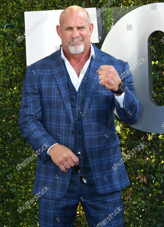 Stock Picture of Bill Goldberg