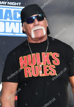 Stock Photo of Hulk Hogan