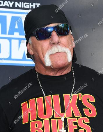 Stock Picture of Hulk Hogan