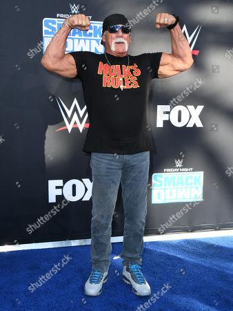 Stock Image of Hulk Hogan