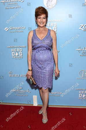 Stock Picture of Carolyn Hennesy