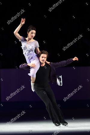 Stock Photo of Meryl Davis & Charlie White (USA) - Figure Skating.