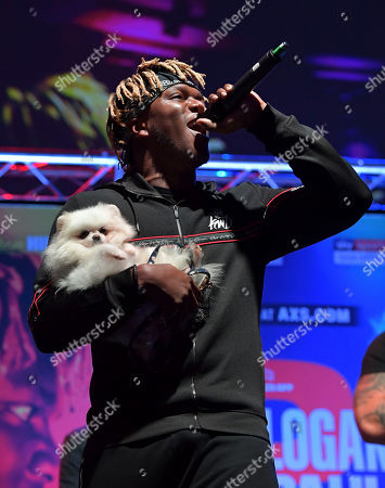 KSI walks on stage with his dog