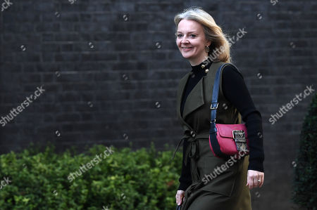 Stock Picture of British Secretary of State for International Trade and President of the Board of Trade, Minister for Women and Equalities Liz Truss arrives for a cabinet meeting at 10 Downing Street in London, Britain, 08 October 2019.