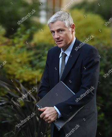 British Minister of State Zac Goldsmith arrives for a cabinet meeting at 10 Downing Street in London, Britain, 08 October 2019.