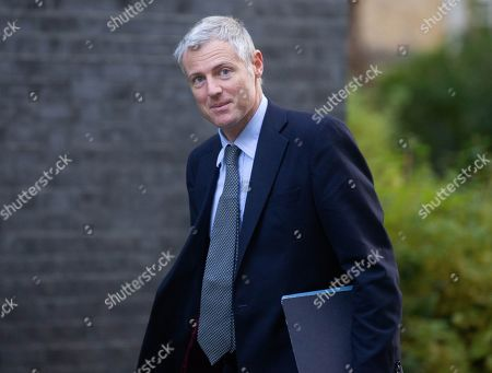 Zac Goldsmith, Minister of State, arrives for the Cabinet meeting.