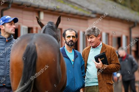 Editorial picture of Horse Racing - 08 Oct 2019