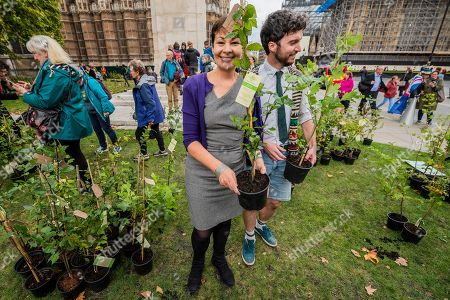 Caroline Lucas, Green MP, collects her tree from one of the organisers - Trees are layed out for every member of parliament with their phone numbers on so constituents can ask them to come down and collect them