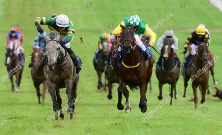 Thurles BAY HILL & Darragh O'Keeffe (left) get the better of HARVEST BOW & COlin Keane (right) to win the Thurles Races Handicap.
