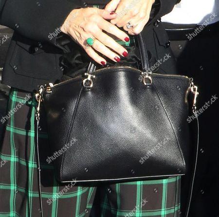 Penelope Ann Miller, bag detail