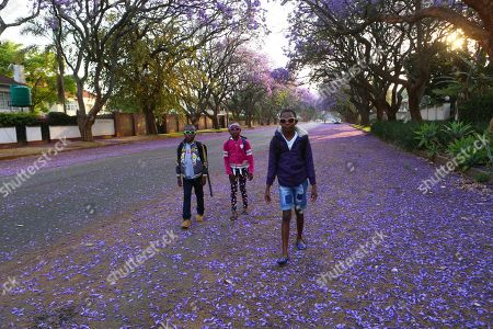 Children walk to school underneath jacaranda trees lining the streets of the capital Harare, Zimbabwe, Friday, Oct, 11, 2019. Zimbabwe now has the world's second highest inflation after Venezuela, according to International Monetary Fund figures. The economy has been on a downward spiral for more than a year as hopes fade that Mugabe's successor and former deputy, President Emmerson Mnangagwa, will deliver on his promises of prosperity