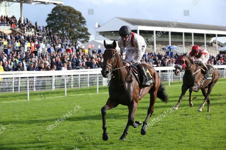 HAMISH (1) ridden by Daniel Tudhope and trained by William Haggas winning The Racebets Handicap Stakes over 1m 6f (£100,000)   during the October Finale Meeting at York Racecourse, York