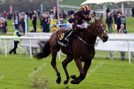 CROWNTHORPE (9) ridden by Sean Davis and trained by Richard Fahey winning The Racebets Money Back 2nd 3rd 4th Handicap Stakes over 1m (£25,000)  during the October Finale Meeting at York Racecourse, York