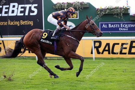 Editorial picture of Horse Racing, York Racecourse, October Finale - 11 Oct 2019