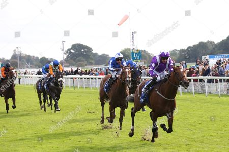 Editorial image of Horse Racing, York Racecourse, Coral Sprint Trophy - 12 Oct 2019