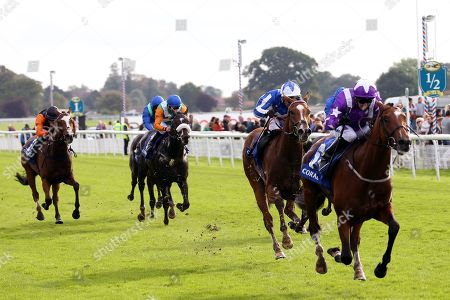 COOLAGH FOREST (6) ridden by Paul Hanagan and trained by Richard Fahey winning The Smart Moneys On Coral Stakes over 1m 2f (£30,000)  during the York Coral Sprint Trophy meeting at York Racecourse, York