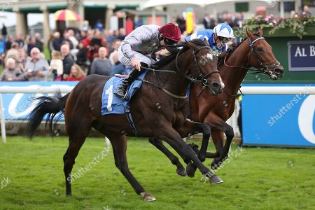 Editorial picture of Horse Racing, York Racecourse, Coral Sprint Trophy - 12 Oct 2019