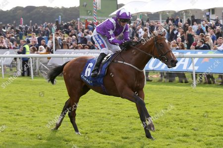 Stock Picture of COOLAGH FOREST (6) ridden by Paul Hanagan and trained by Richard Fahey winning The Smart Moneys On Coral Stakes over 1m 2f (£30,000)  during the York Coral Sprint Trophy meeting at York Racecourse, York