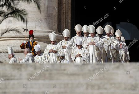 Cardinals during the canonization Mass of five new Saints in St. Peters Square at the Vatican, 13 October 2019. Five new Saints are canonized at the Vatican on 13 October 2019, namely Brazilian Sister Dulce Lopes Pontes, Swiss Franciscan tertiary Marguerite Bays, Sister Giuseppina Vannini, India's Mother Mariam Thresia Mankidiyan, and British Cardinal John W. Henry Newman.