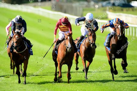 Editorial photo of Horse Racing - 13 Oct 2019