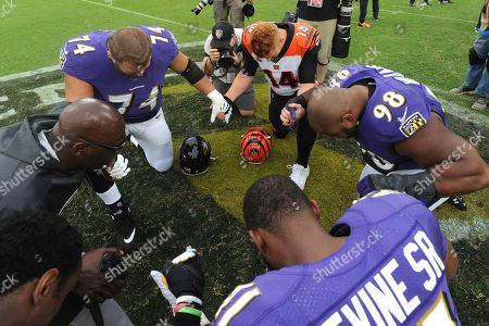Editorial picture of Bengals Ravens Football, Baltimore, USA - 13 Oct 2019