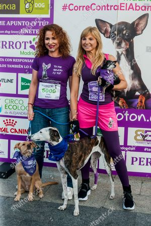 Editorial image of Race against dog abandonment, Madrid, Spain - 13 Oct 2019