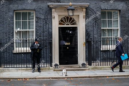 Stock Picture of Larry the Downing Street cat as James Cleverly leaves No 10