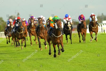 Winner of The Nailsea Electrical Kitchen and Appliance Fillies' Handicap Gamesters Icon ridden by Megan Nicholls and trained by Oliver Greenall during Horse Racing at Bath Racecourse on 16th October 2019
