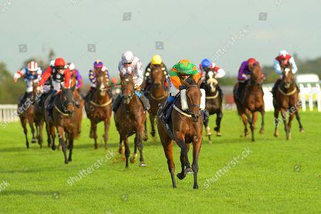 Editorial image of Season Finale, Horse Racing, Bath Racecourse, United Kingdom - 16 Oct 2019