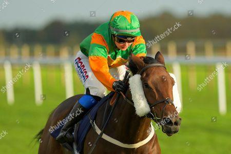 Editorial picture of Season Finale, Horse Racing, Bath Racecourse, United Kingdom - 16 Oct 2019
