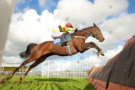 Fresno Emery ridden by James Best clears the last in The Tribute to Marcus Trescothick Handicap Hurdle during Horse Racing at Wincanton Racecourse on 17th October 2019